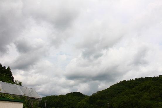 2019_07_01_0060.JPG